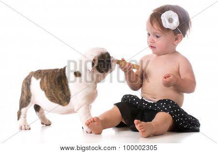 child feeding a puppy a dog bone