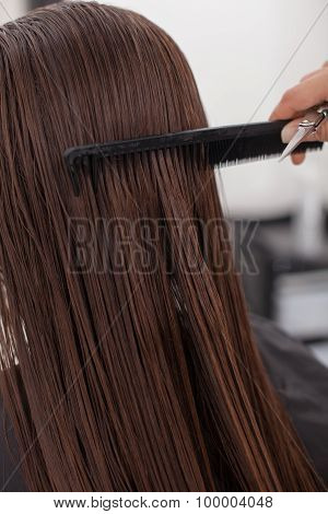 Skilled young hairdresser is serving a client in salon