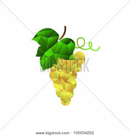 Grape with leaf