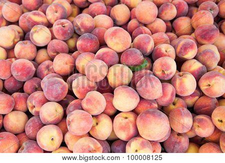 Lots of rine ripe peaches