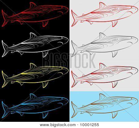 Shark, Set, Collection