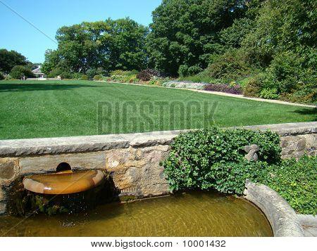 Garden lawn01