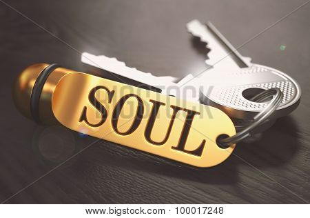 Keys and Golden Keyring with the Word Soul over Black Wooden Table with Blur Effect. Toned Image. poster