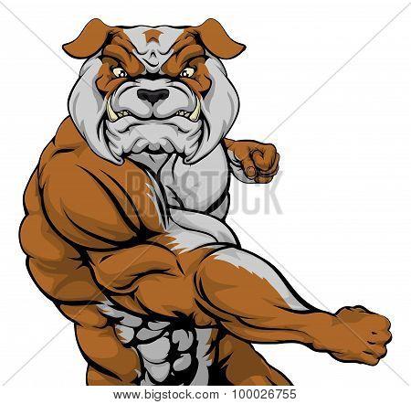 Bulldog Punching