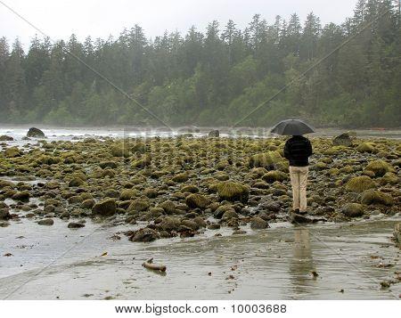 Rainy seashore