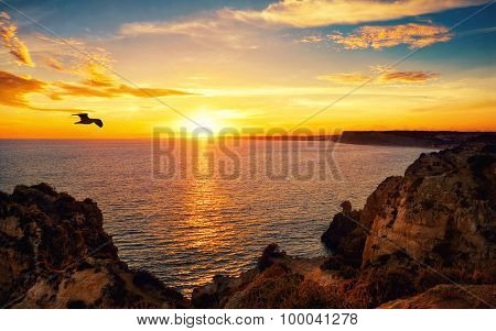 Tranquil Sunset Scene At The Ocean