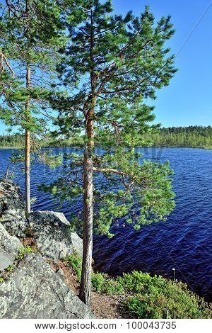 Karelian Landscape. Pongoma River, North Karelia, Russia