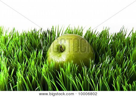 Apple in green grass.