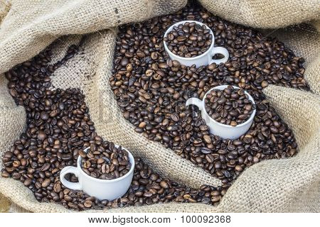 cups in coffee beans