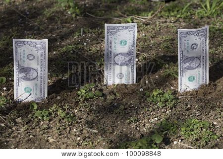 dollars in the ground