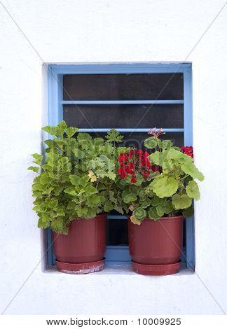 Mykonos Window