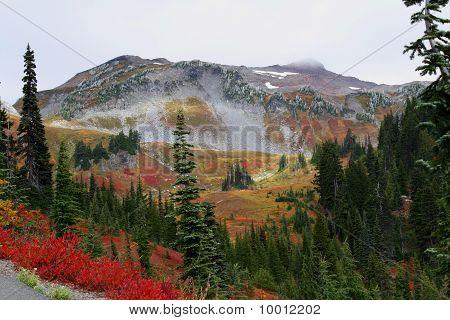 Alpine Wonderland