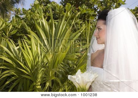 Caribbean Beach Wedding - Bride With Bouquet