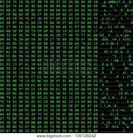 Computer Hexadecimal Data Listing