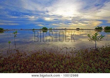 Bonaire Lake