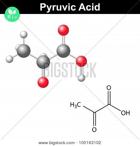 poster of Pyruvic acid molecule, pyruvate structural chemical formula and model, 2d and 3d vector isolated on white background, eps 8