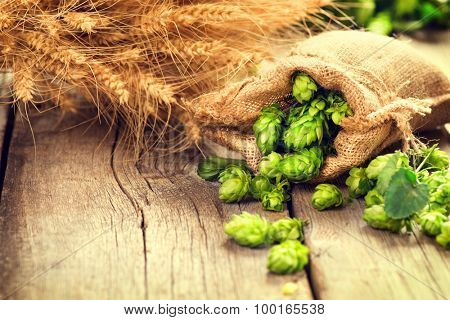 Beer brewing ingredients Hop in bag and wheat ears on wooden cracked old table. Beer brewery concept. Hop cones and wheat closeup. Sack of hops and sheaf of wheat on vintage background.  poster