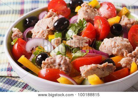 Salad Of Tuna Fish And Fresh Vegetables Close Up. Horizontal