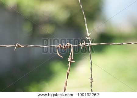Close Up Of A Barbed Wire