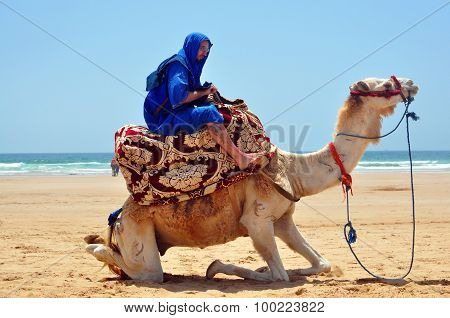 Berber On Camel