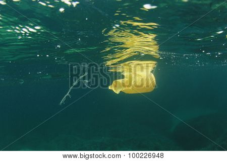 Plastic bottle disposed of in sea causes environmental damage from pollution poster