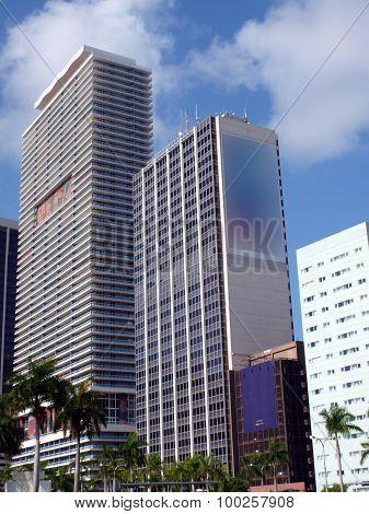 Miami Downtown Day Scene