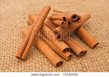 Cinnamon On A Canopy