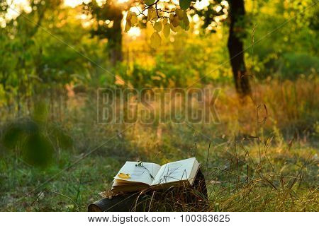 Vintage Book Of Poetry Outdoors Under A Tree