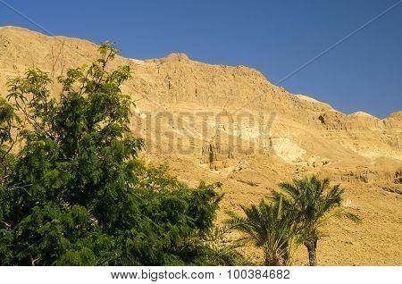 Orange Rocks In Judean Desert