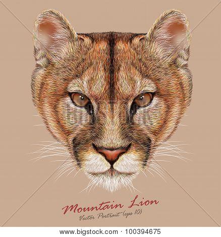 Vector Portrait of a Mountain Lion