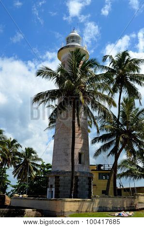 Galle Fort Lighthous And Palm Trees