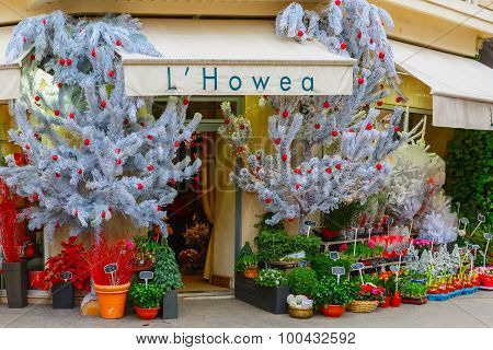 Flower shop Hovea, Paris