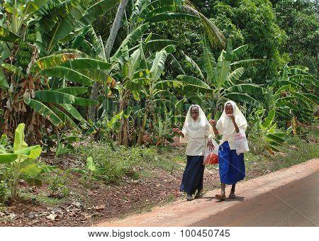 Two Muslim Schoolgirls In Headscarves Walk Along Road In Jungle.