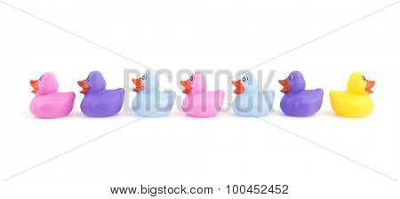 Rubber ducks in a row, with one headed to opposite direction - concept of individuality