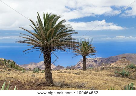 La Gomera Canary islands view towards south coast from hiking trail GR 131 poster