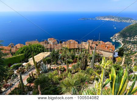 Botanical Garden In Eze Sur Mer, French Riviera