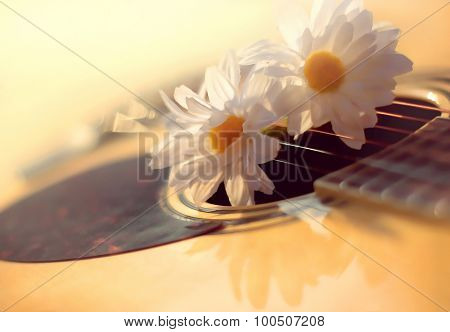 Defocused Blurry Sunny Photo Of Acoustic Guitar And White Flowers Chamomiles Close-up, Music Backgro