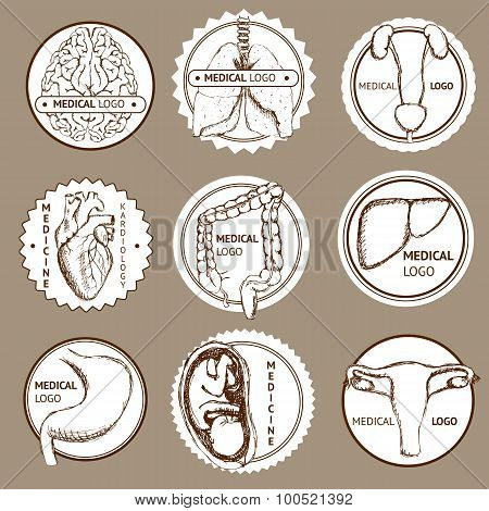 Sketch Set Of Medical Logotypes