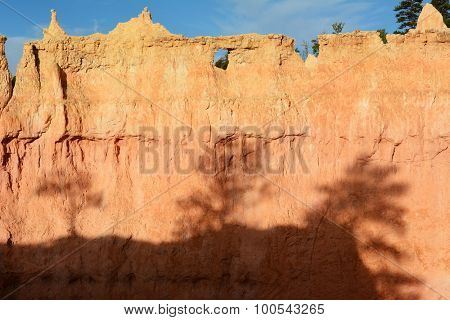 Shadows from bristlecone pine trees on rock formation in Bryce Canyon National Park, Utah.