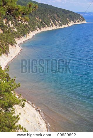 tortuous seacoast nearly village Betta