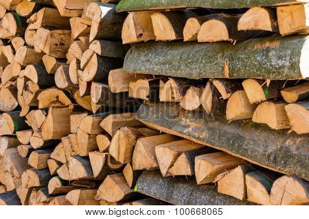trees in a forest have been recut at woodwork. natural, energy-efficient and sustainable heating.