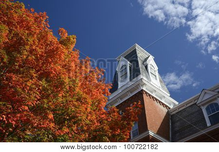 Bright Autumn Tree By Roof