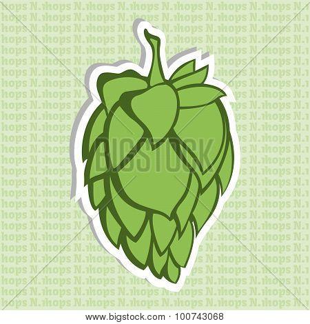 Green Hop Flower Illustration
