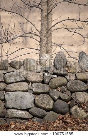 Rock Wall With Trees In Autumn