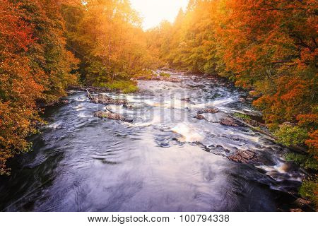 River Landscape With Orange And Red Forest Autumn