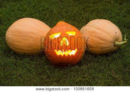 Autumn Helloween Pumpkin