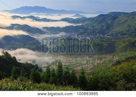 Rice fields on terraced in sunrise,