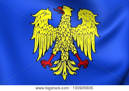 3D Flag of Friuli Region Italy. Close Up. poster