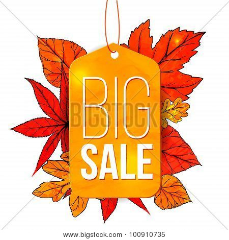 Big sale banner with autumn leaves and yellow tag isolated on white background. Fall sale vector des