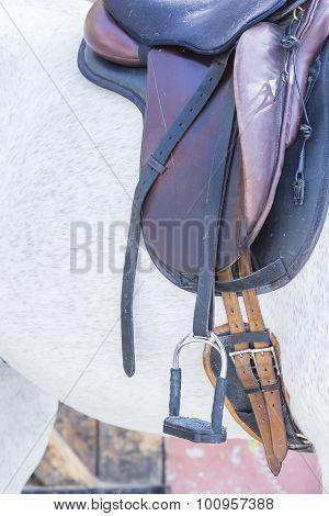 Saddle On A Horse.
